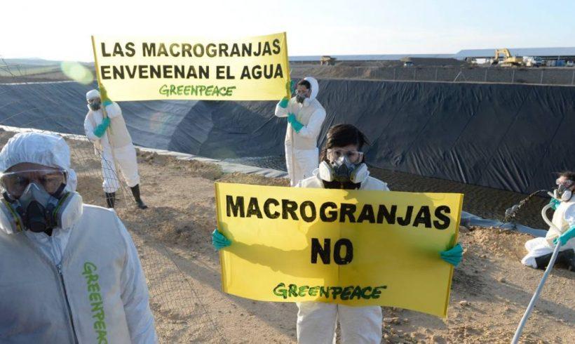 En el Día del Agua, Greenpeace devuelve una tonelada de agua contaminada a la macrogranja de Caparroso para exigir legislación más ambiciosa – ES
