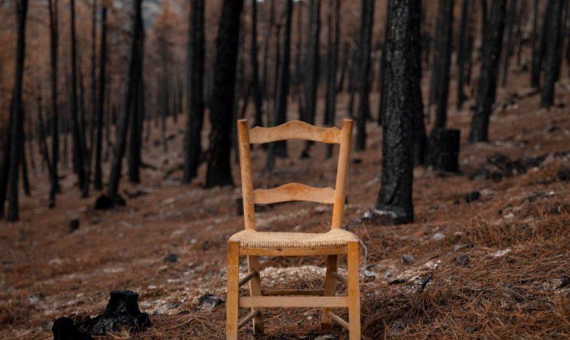 Clima y biodiversidad necesitan las campanas de la España vaciada – ES