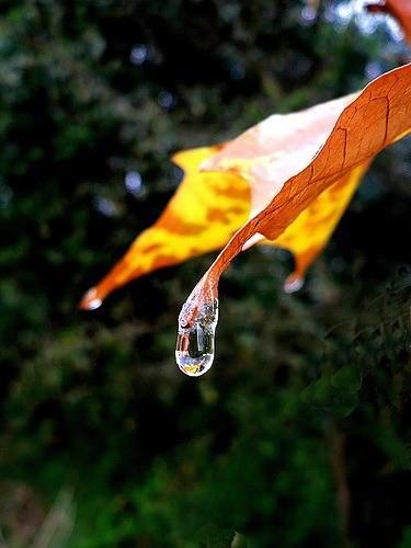 22 de Marzo de 2021: Día Mundial del Agua