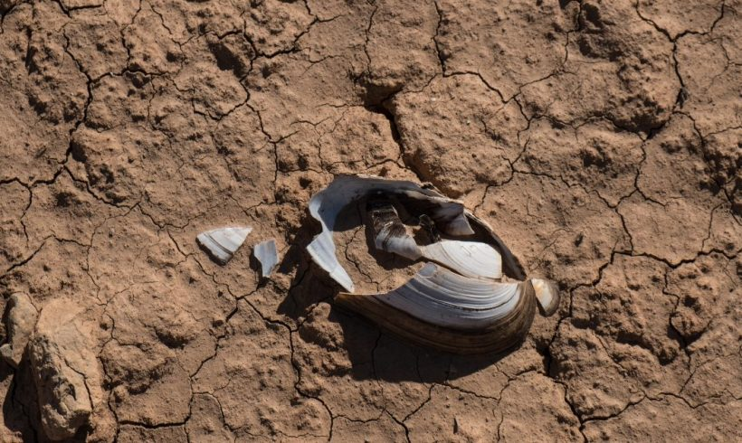 agua – ES | Greenpeace España
