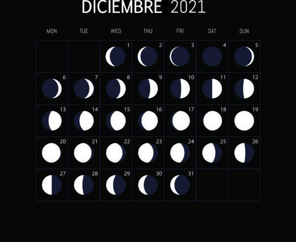 El calendario lunar para huerto y el jardín June 2021