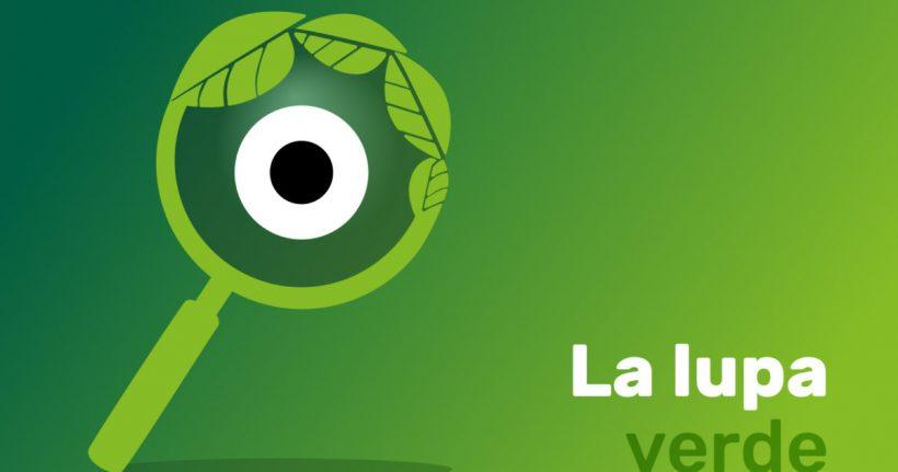 La Lupa Verde, el observatorio de Greenpeace para vigilar que la recuperación económica sea verde y justa – ES