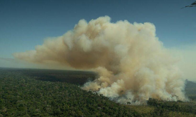Los satélites confirman que la deforestación en la Amazonia sigue fuera de control – ES