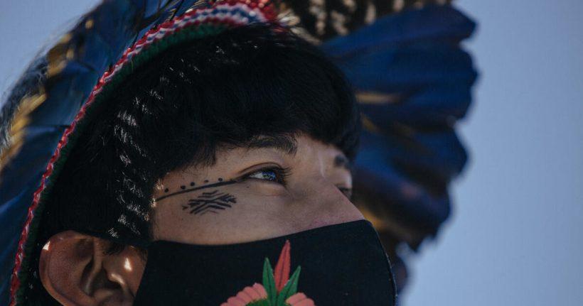 Miles de indígenas en Brasilia emprenden la #LutaPelaVida – ES