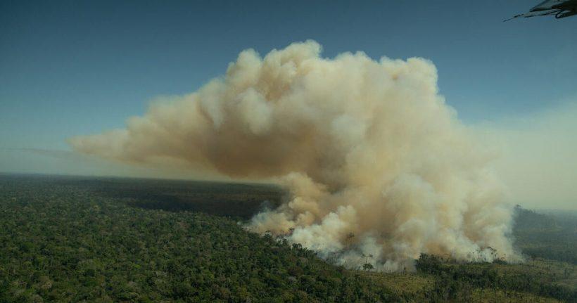 Greenpeace denuncia que el Banco Santander sigue financiando la deforestación de la Amazonia – ES
