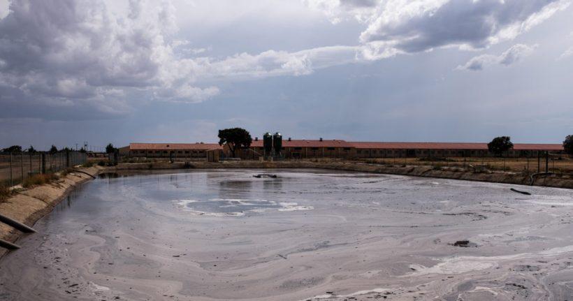 Castilla y León, tercera comunidad que más contribuye a la crisis climática con su ganadería industrial, según un informe de Greenpeace – ES